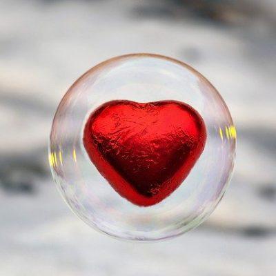 Basic Course in Pediatric Heart Failure and Heart Transplantation
